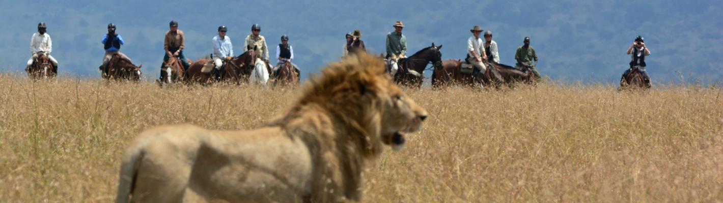 Horseback Safaris with Safaris Unlimited